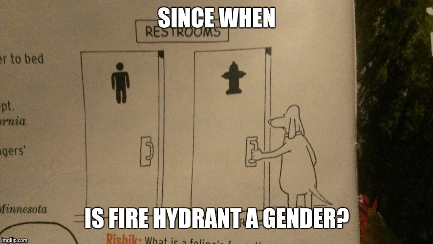 SINCE WHEN IS FIRE HYDRANT A GENDER? | image tagged in comics | made w/ Imgflip meme maker