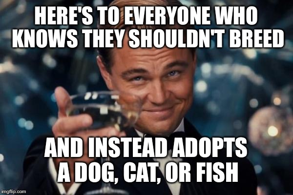 Leonardo Dicaprio Cheers Meme | HERE'S TO EVERYONE WHO KNOWS THEY SHOULDN'T BREED AND INSTEAD ADOPTS A DOG, CAT, OR FISH | image tagged in memes,leonardo dicaprio cheers | made w/ Imgflip meme maker