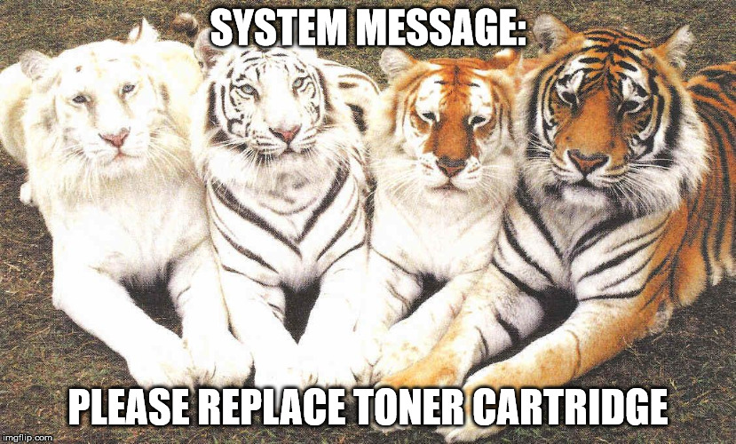 SYSTEM MESSAGE: PLEASE REPLACE TONER CARTRIDGE | image tagged in tiger,printer,toner | made w/ Imgflip meme maker