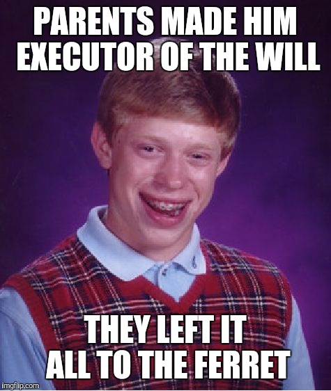 Bad Luck Brian Meme | PARENTS MADE HIM EXECUTOR OF THE WILL THEY LEFT IT ALL TO THE FERRET | image tagged in memes,bad luck brian | made w/ Imgflip meme maker