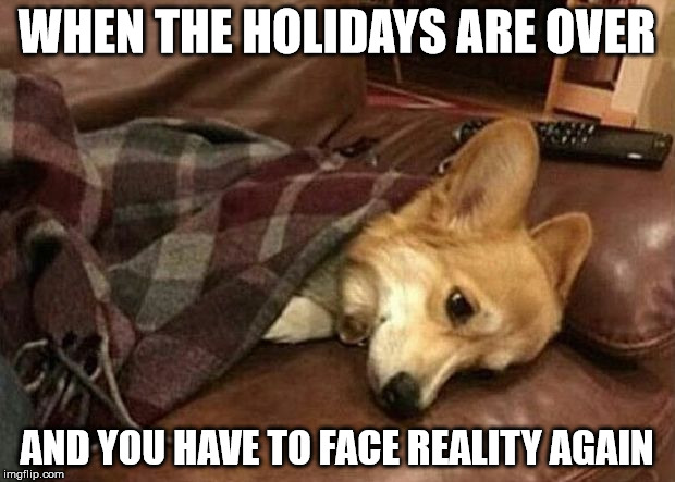 Sad Dog | WHEN THE HOLIDAYS ARE OVER AND YOU HAVE TO FACE REALITY AGAIN | image tagged in sad dog | made w/ Imgflip meme maker