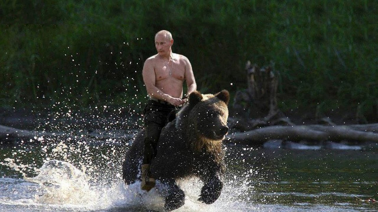 Putin Riding a bear Meme Template