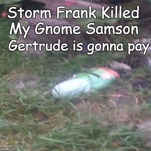 Storm Frank | Storm Frank Killed My Gnome Samson Gertrude is gonna pay | image tagged in storm,hurricane,frank,angry gnome | made w/ Imgflip meme maker
