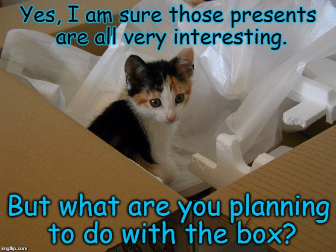 Image result for presents for cats meme""