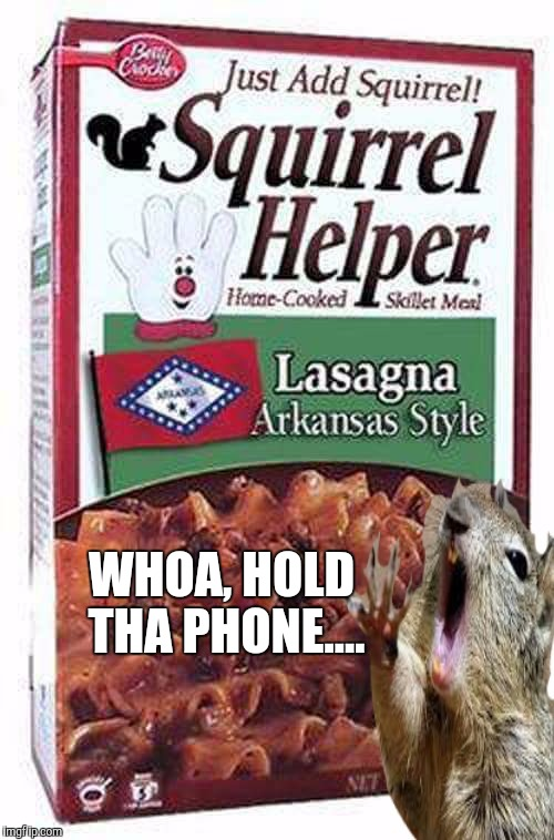 Squirrel Helper | WHOA, HOLD THA PHONE.... | image tagged in funny,memes,squirrels,comedy | made w/ Imgflip meme maker