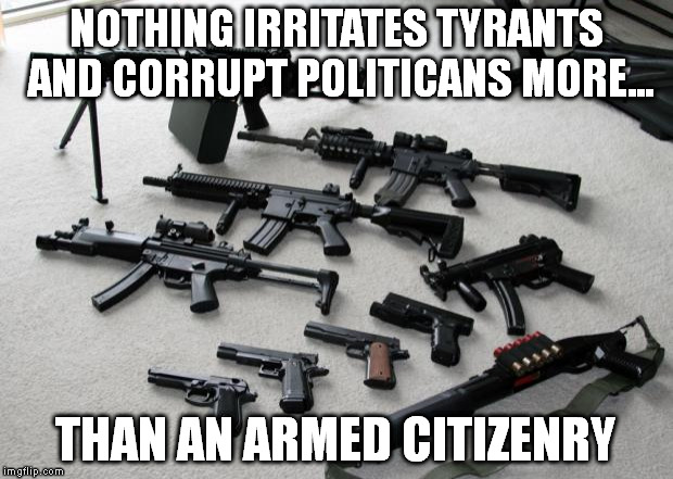 guns | NOTHING IRRITATES TYRANTS AND CORRUPT POLITICANS MORE... THAN AN ARMED CITIZENRY | image tagged in guns | made w/ Imgflip meme maker