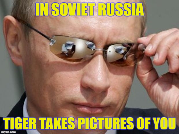 IN SOVIET RUSSIA TIGER TAKES PICTURES OF YOU | made w/ Imgflip meme maker