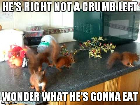 HE'S RIGHT NOT A CRUMB LEFT WONDER WHAT HE'S GONNA EAT | made w/ Imgflip meme maker