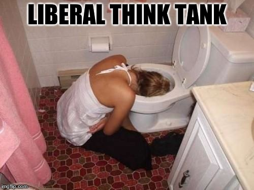 Drunk Girl Toilet | LIBERAL THINK TANK | image tagged in drunk girl toilet | made w/ Imgflip meme maker