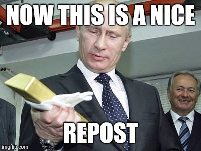 Putin - this will do | NOW THIS IS A NICE REPOST | image tagged in putin - this will do | made w/ Imgflip meme maker
