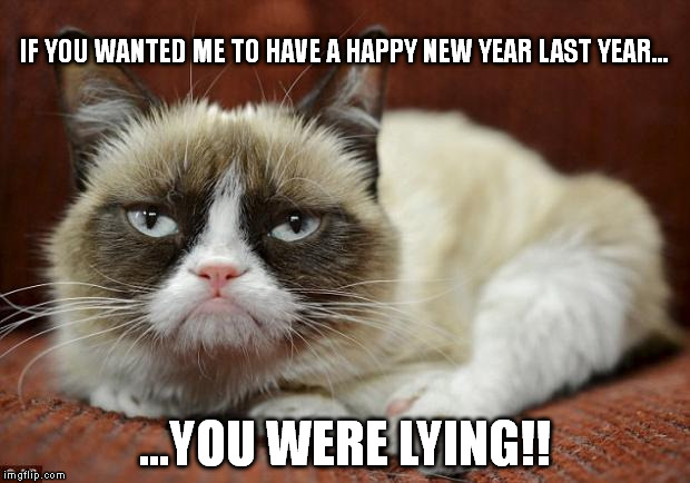 Grumpy Cat New Year | IF YOU WANTED ME TO HAVE A HAPPY NEW YEAR LAST YEAR... ...YOU WERE LYING!! | image tagged in grumpy cat new year | made w/ Imgflip meme maker