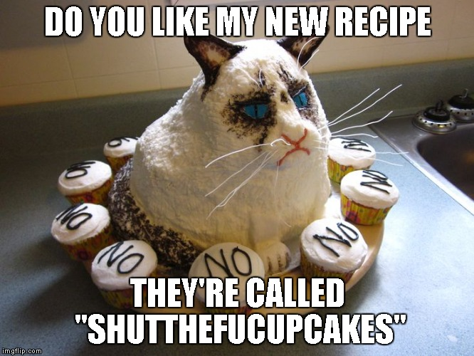 "Grumpy Cat strikes again... | DO YOU LIKE MY NEW RECIPE THEY'RE CALLED ""SHUTTHEFUCUPCAKES"" 