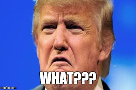 Donald trump crying | WHAT??? | image tagged in donald trump crying | made w/ Imgflip meme maker