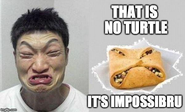 THAT IS NO TURTLE IT'S IMPOSSIBRU | made w/ Imgflip meme maker