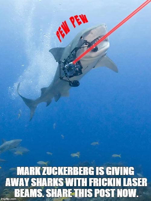 Mark Zuckerberg Sharks With Laser Beams Imgflip