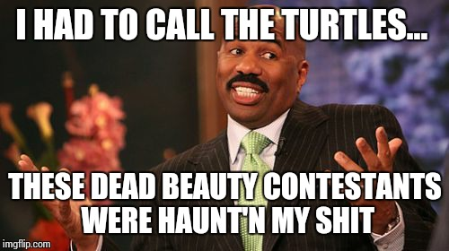 Steve Harvey Meme | I HAD TO CALL THE TURTLES... THESE DEAD BEAUTY CONTESTANTS WERE HAUNT'N MY SHIT | image tagged in memes,steve harvey | made w/ Imgflip meme maker