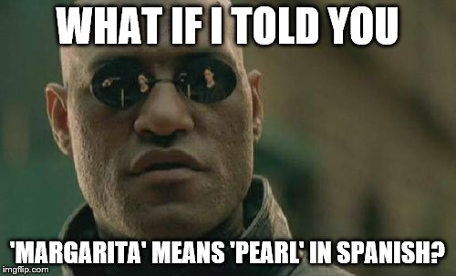 Matrix Morpheus Meme | WHAT IF I TOLD YOU 'MARGARITA' MEANS 'PEARL' IN SPANISH? | image tagged in memes,matrix morpheus | made w/ Imgflip meme maker