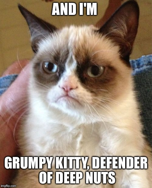Grumpy Cat Meme | AND I'M GRUMPY KITTY, DEFENDER OF DEEP NUTS | image tagged in memes,grumpy cat | made w/ Imgflip meme maker