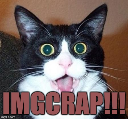 whoa cat | IMGCRAP!!! | image tagged in whoa cat | made w/ Imgflip meme maker