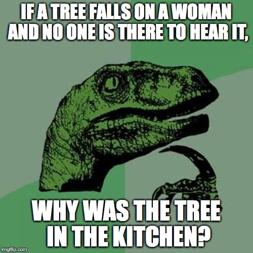 Philosoraptor Meme | IF A TREE FALLS ON A WOMAN AND NO ONE IS THERE TO HEAR IT, WHY WAS THE TREE IN THE KITCHEN? | image tagged in memes,philosoraptor | made w/ Imgflip meme maker