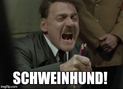Hitler Downfall | SCHWEINHUND! | image tagged in hitler downfall | made w/ Imgflip meme maker