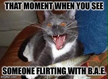 THAT MOMENT WHEN YOU SEE SOMEONE FLIRTING WITH B.A.E. | image tagged in cat with knife | made w/ Imgflip meme maker