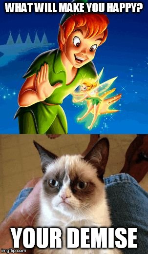 grumpy cat does not - photo #30