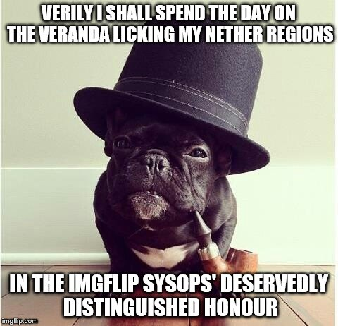 Such award is second only to a UNIX Knighthood. | VERILY I SHALL SPEND THE DAY ON THE VERANDA LICKING MY NETHER REGIONS IN THE IMGFLIP SYSOPS' DESERVEDLY DISTINGUISHED HONOUR | image tagged in dapper,dog,nether | made w/ Imgflip meme maker