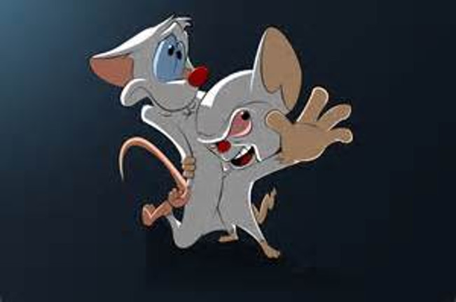 Pinky and the Brain Meme Template