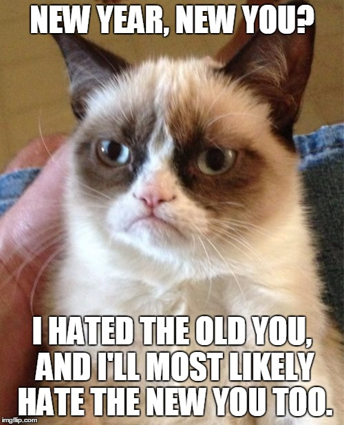 She ain't got time for your transformations | NEW YEAR, NEW YOU? I HATED THE OLD YOU, AND I'LL MOST LIKELY HATE THE NEW YOU TOO. | image tagged in memes,grumpy cat,new year,2016,resolution | made w/ Imgflip meme maker