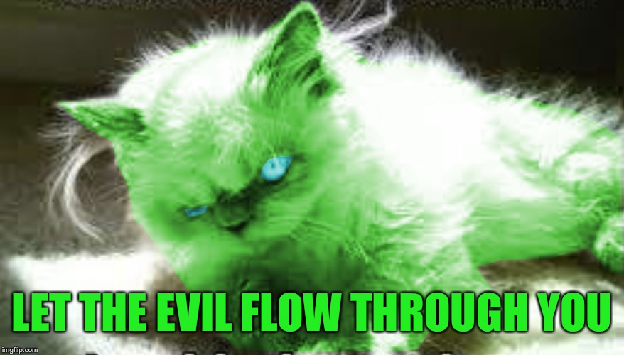 mad raycat | LET THE EVIL FLOW THROUGH YOU | image tagged in mad raycat | made w/ Imgflip meme maker