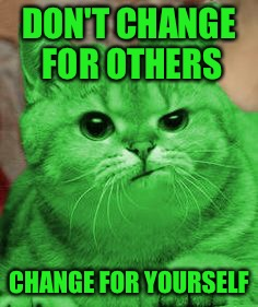 RayCat Annoyed | DON'T CHANGE FOR OTHERS CHANGE FOR YOURSELF | image tagged in raycat annoyed | made w/ Imgflip meme maker