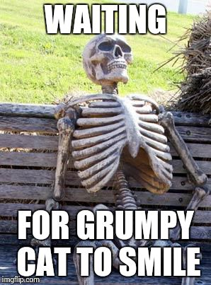 Waiting Skeleton Meme | WAITING FOR GRUMPY CAT TO SMILE | image tagged in memes,waiting skeleton | made w/ Imgflip meme maker