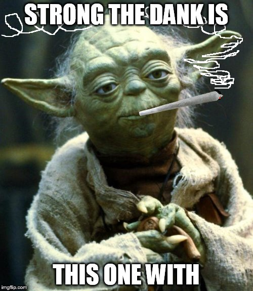 Star Wars Yoda Meme | STRONG THE DANK IS THIS ONE WITH | image tagged in memes,star wars yoda | made w/ Imgflip meme maker