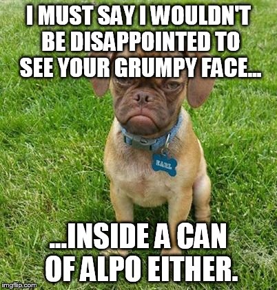 I MUST SAY I WOULDN'T BE DISAPPOINTED TO SEE YOUR GRUMPY FACE... ...INSIDE A CAN OF ALPO EITHER. | made w/ Imgflip meme maker