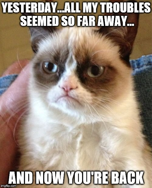 He just wants you to Beat-le it | YESTERDAY...ALL MY TROUBLES SEEMED SO FAR AWAY... AND NOW YOU'RE BACK | image tagged in memes,grumpy cat,beatles,yesterday,music,songs | made w/ Imgflip meme maker