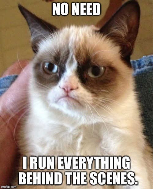 Grumpy Cat Meme | NO NEED I RUN EVERYTHING BEHIND THE SCENES. | image tagged in memes,grumpy cat | made w/ Imgflip meme maker