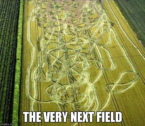 THE VERY NEXT FIELD | made w/ Imgflip meme maker