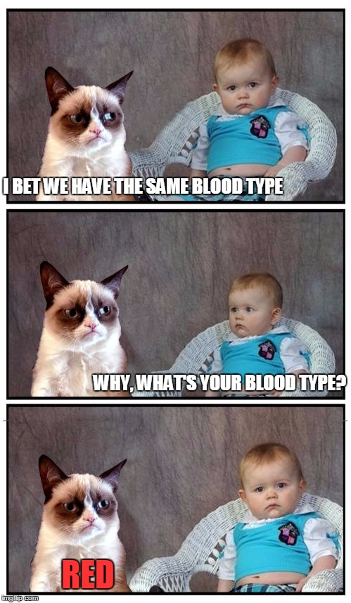 Dad Joke Cat | I BET WE HAVE THE SAME BLOOD TYPE WHY, WHAT'S YOUR BLOOD TYPE? RED | image tagged in dad joke cat,memes | made w/ Imgflip meme maker
