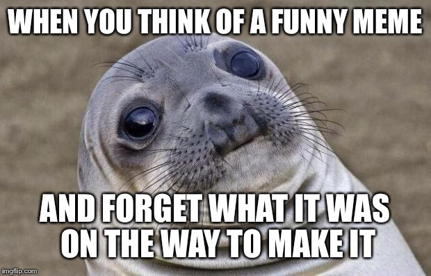 This is what happened to me tonight. So I decided to make this instead.  | WHEN YOU THINK OF A FUNNY MEME AND FORGET WHAT IT WAS ON THE WAY TO MAKE IT | image tagged in memes,awkward moment sealion | made w/ Imgflip meme maker