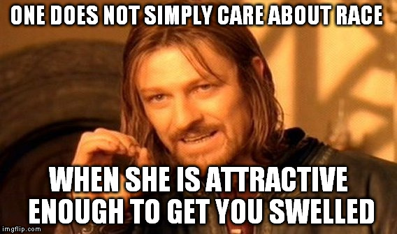 One Does Not Simply Meme | ONE DOES NOT SIMPLY CARE ABOUT RACE WHEN SHE IS ATTRACTIVE ENOUGH TO GET YOU SWELLED | image tagged in memes,one does not simply | made w/ Imgflip meme maker