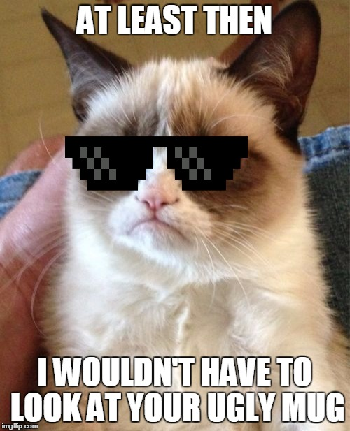 Grumpy Cat Meme | AT LEAST THEN I WOULDN'T HAVE TO LOOK AT YOUR UGLY MUG | image tagged in memes,grumpy cat | made w/ Imgflip meme maker