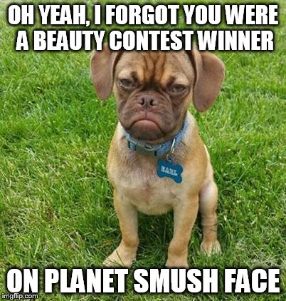 OH YEAH, I FORGOT YOU WERE A BEAUTY CONTEST WINNER ON PLANET SMUSH FACE | made w/ Imgflip meme maker