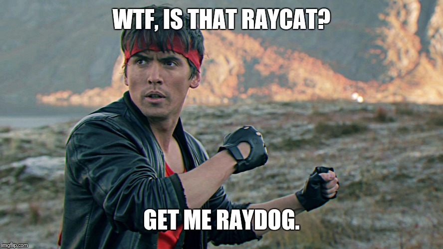 Kung Fury | WTF, IS THAT RAYCAT? GET ME RAYDOG. | image tagged in kung fury | made w/ Imgflip meme maker