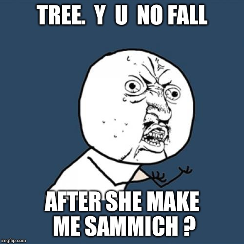 Y U No Meme | TREE.  Y  U  NO FALL AFTER SHE MAKE ME SAMMICH ? | image tagged in memes,y u no | made w/ Imgflip meme maker