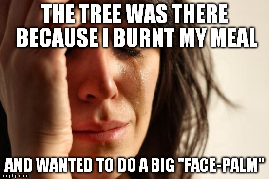 "First World Problems Meme | THE TREE WAS THERE BECAUSE I BURNT MY MEAL AND WANTED TO DO A BIG ""FACE-PALM"" 