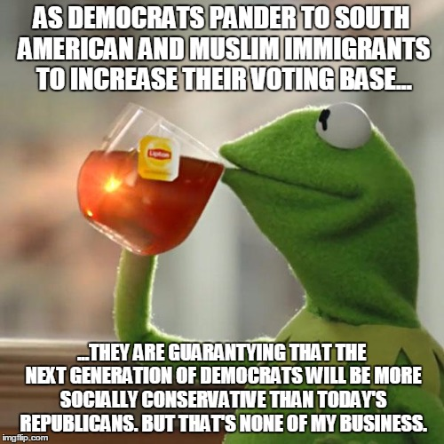 But Thats None Of My Business Meme | AS DEMOCRATS PANDER TO SOUTH AMERICAN AND MUSLIM IMMIGRANTS TO INCREASE THEIR VOTING BASE... ...THEY ARE GUARANTYING THAT THE NEXT GENERATIO | image tagged in memes,but thats none of my business,kermit the frog | made w/ Imgflip meme maker