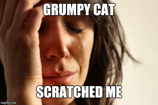 First World Problems Meme | GRUMPY CAT SCRATCHED ME | image tagged in memes,first world problems | made w/ Imgflip meme maker