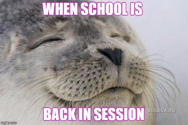 Happy Seal | WHEN SCHOOL IS BACK IN SESSION | image tagged in happy seal | made w/ Imgflip meme maker