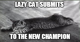 LAZY CAT SUBMITS TO THE NEW CHAMPION | made w/ Imgflip meme maker